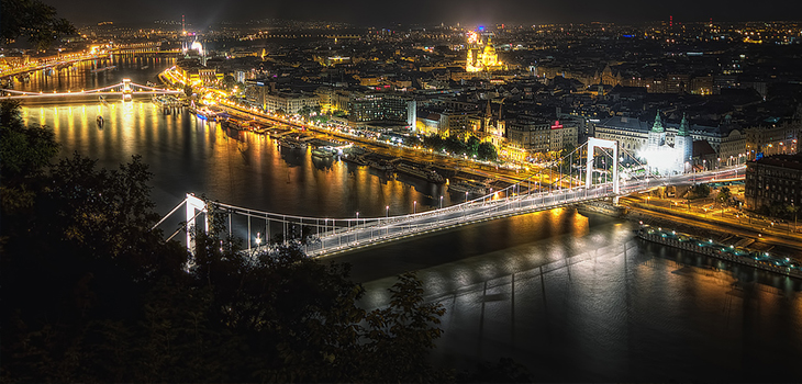 Night City Tour with Dinner on the Danube